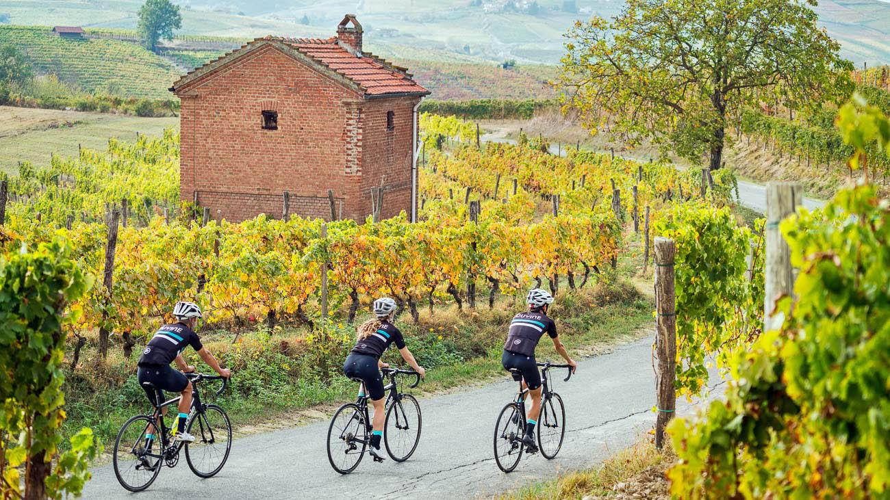 duvine truffle biking trip italy bitesee